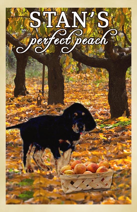 stans perfect peach